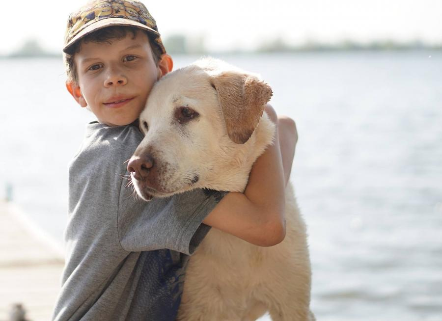 Dreng og hund