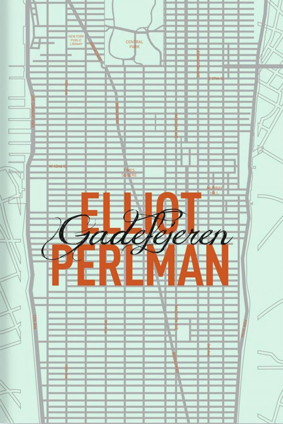 Gadefejeren af Elliot Perlman