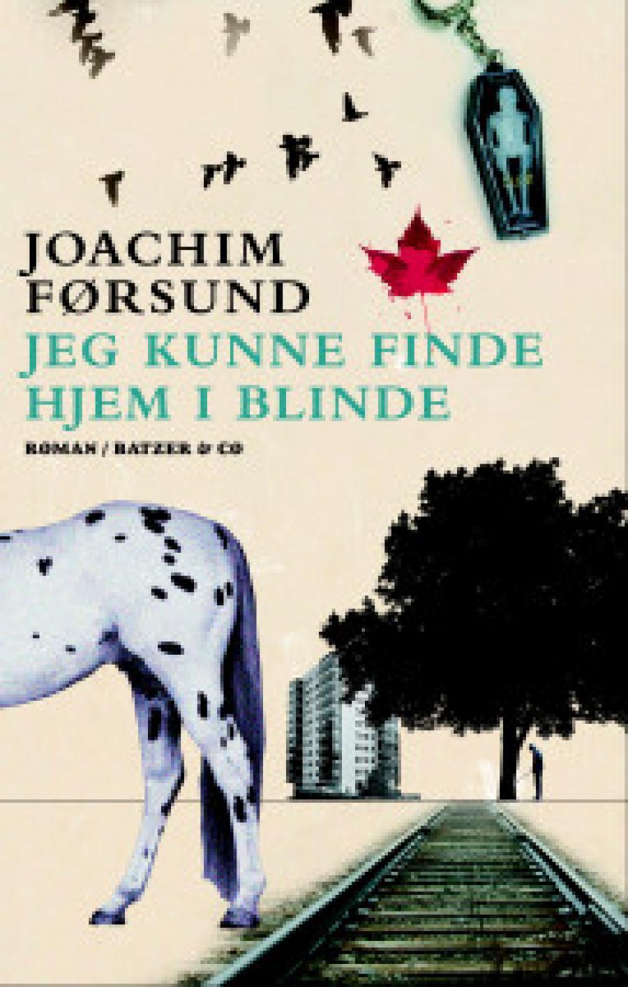 Jeg kunne finde hjem i blinde af Joachim Førsund