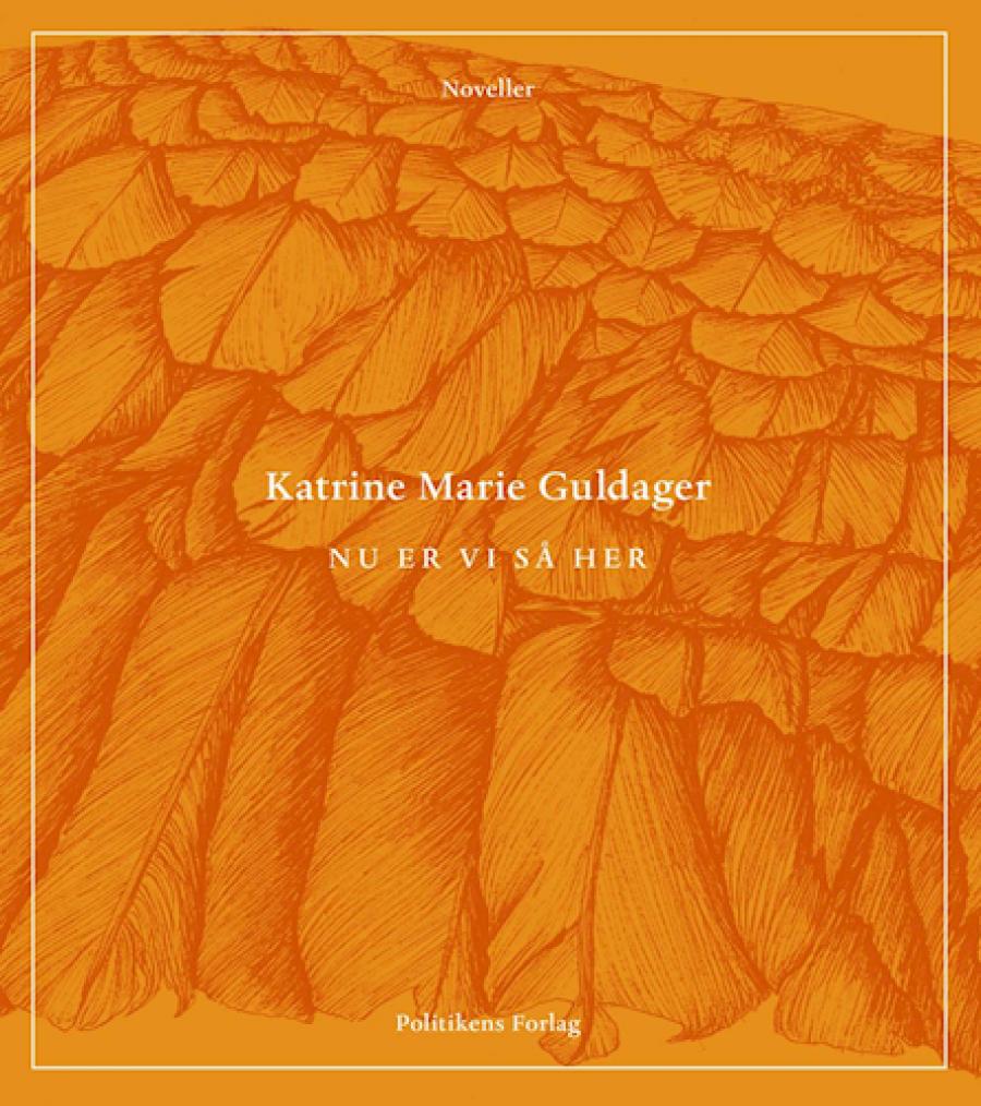 Forside til bogen Nu er vi så her af Katrine Marie Guldager