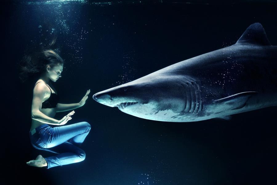 Kvinde og haj